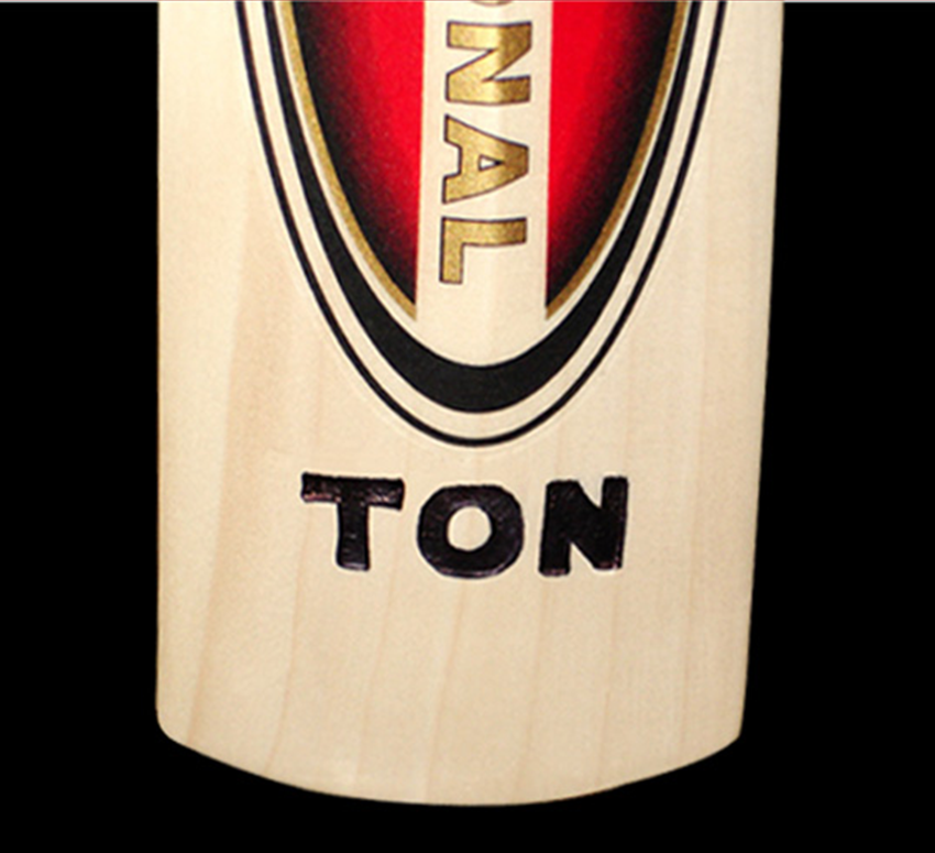 SS Cricket Bat02