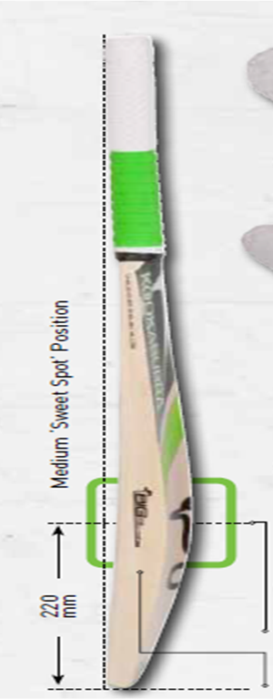 Kookaburra Cricket Bats Players Collection 01