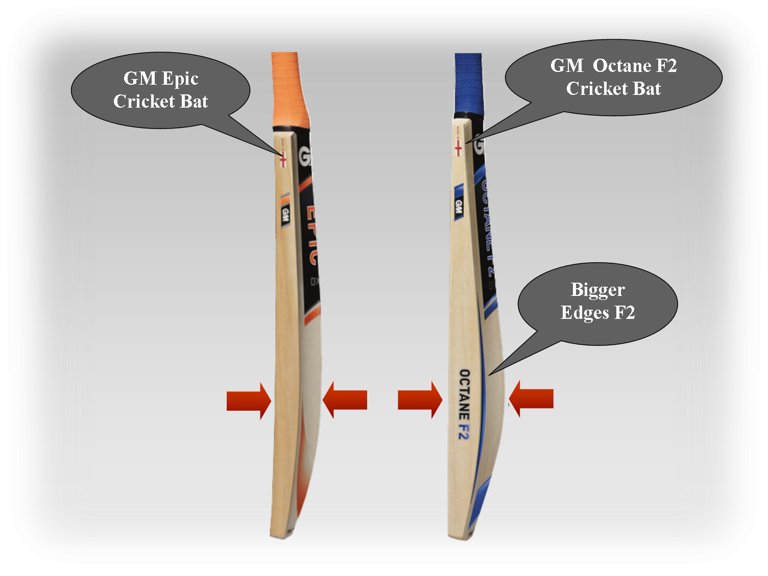 GM Cricket Bats Octane F2