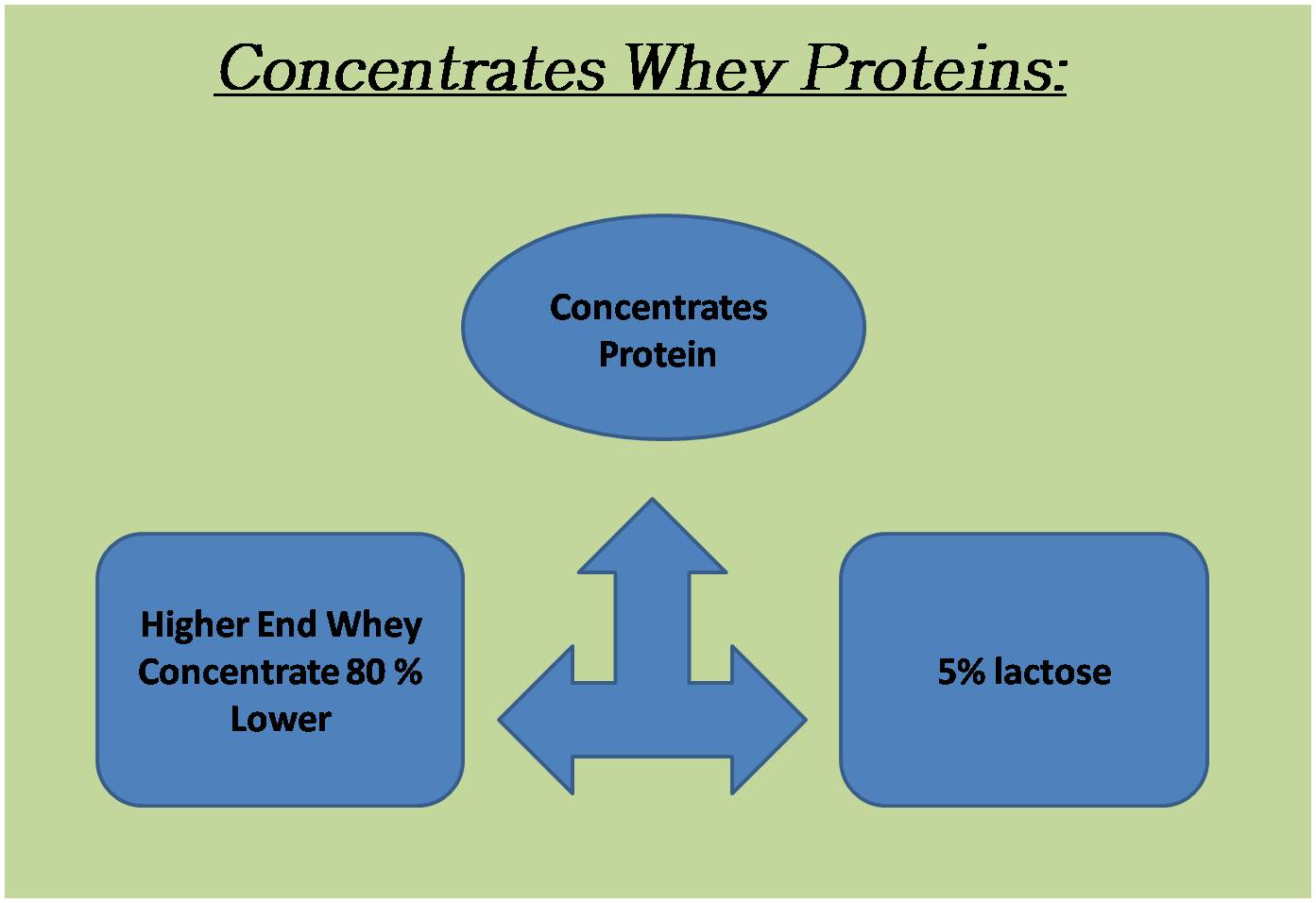 Concentrates Whey Proteins