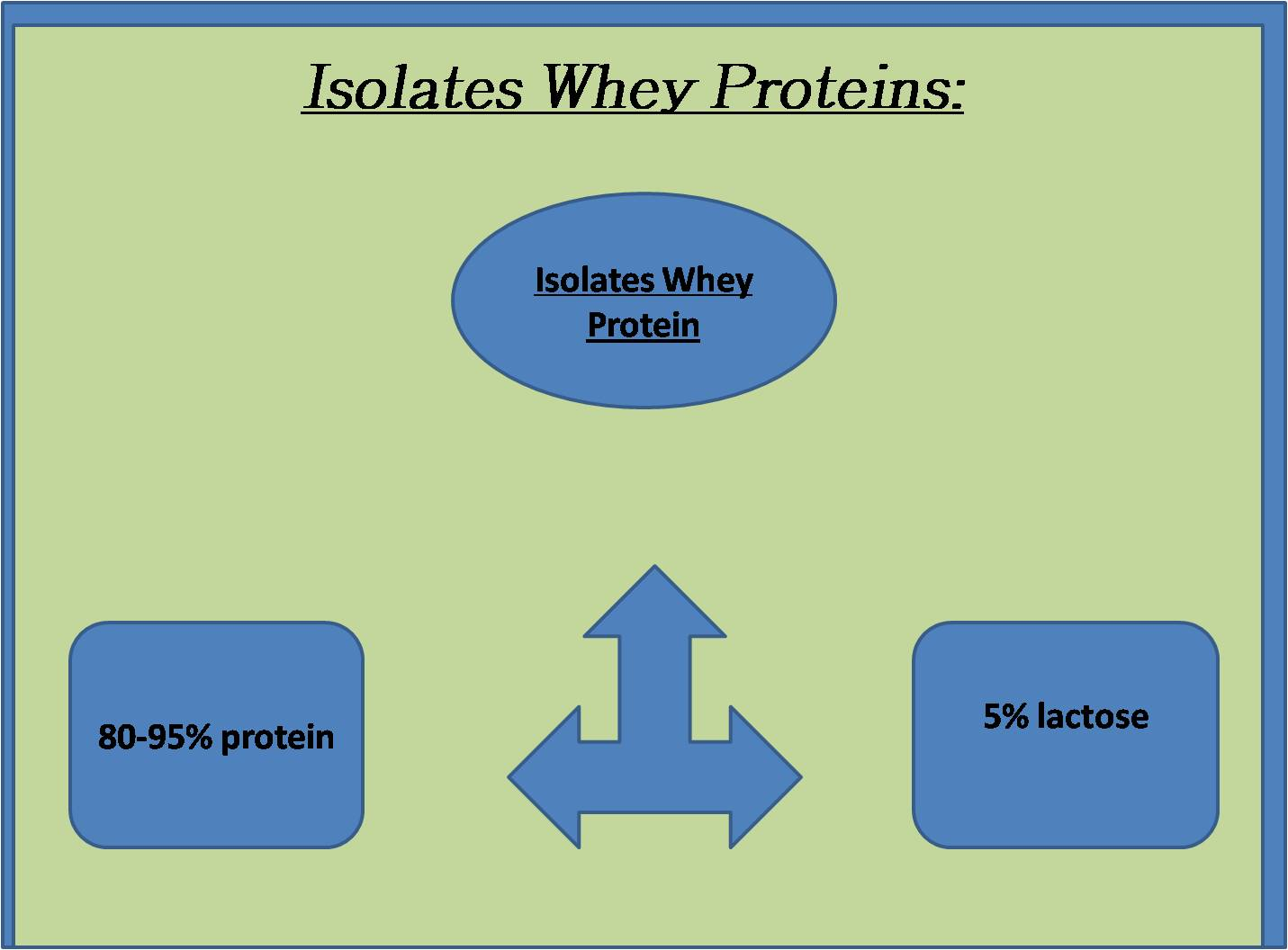Isolates Whey Protein