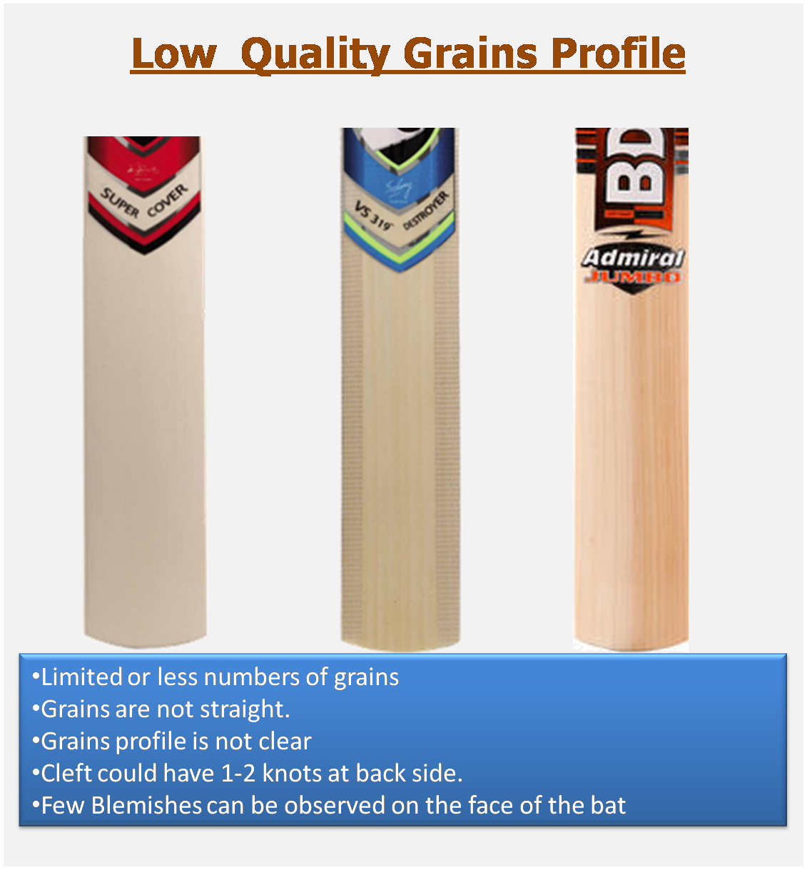 Complete guide on cricket bat grains concepts khelmart lower end english willow cleaft cricket bats biocorpaavc