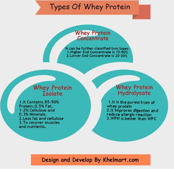Types of Whey Protein Khelmart