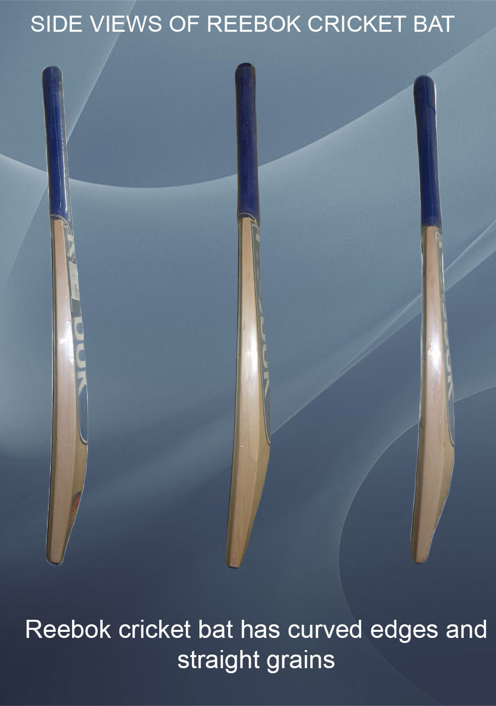 Reebok Cricket bats