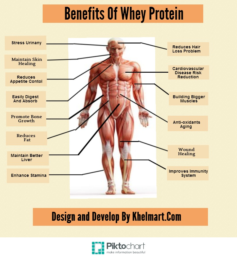 14 Benefits Of Whey Protein
