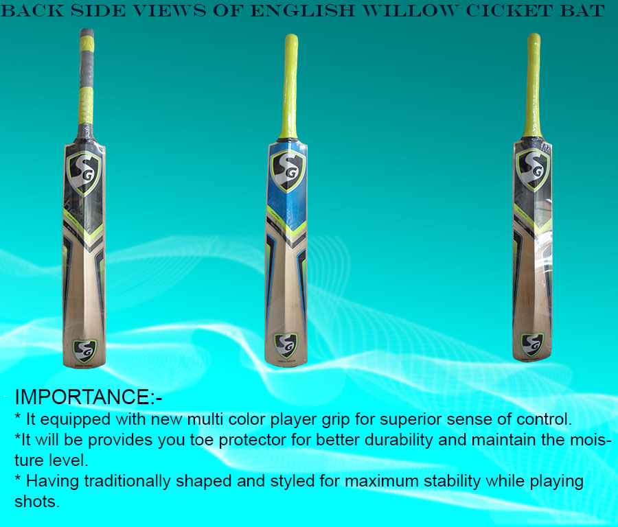Back side views of English willow cricket bats