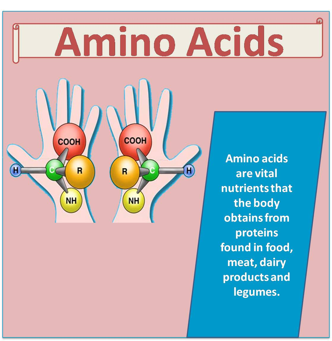 Benefits of Amino Acids | Khelmart.org | It's all about ...
