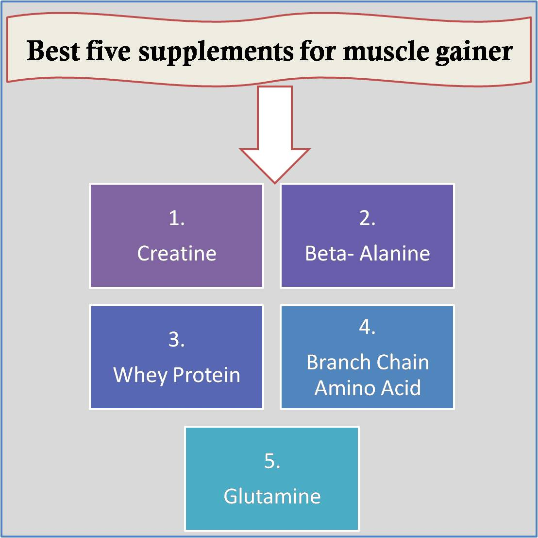 Best five supplements for muscle gainer