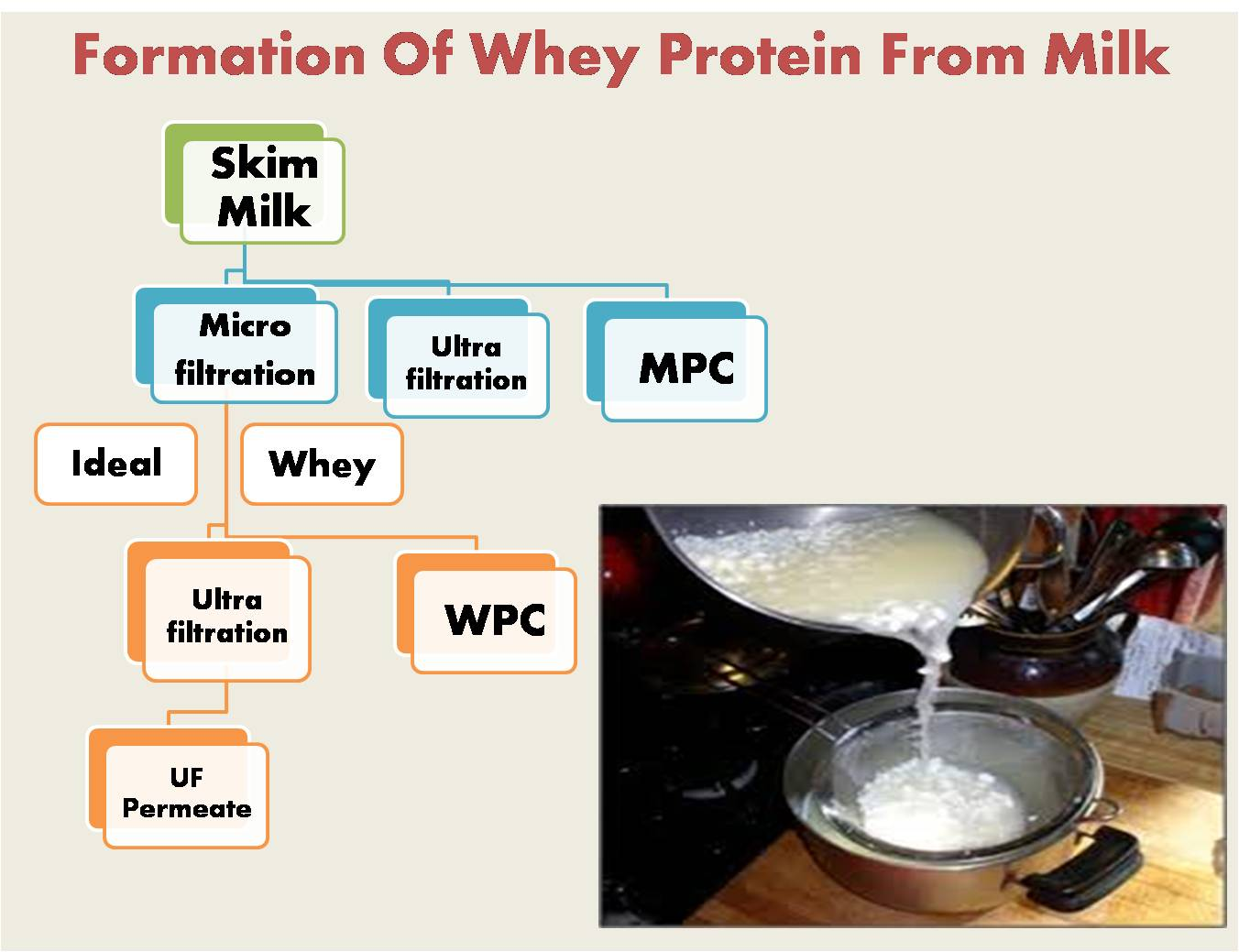 Formation Of Whey Protein From Milk
