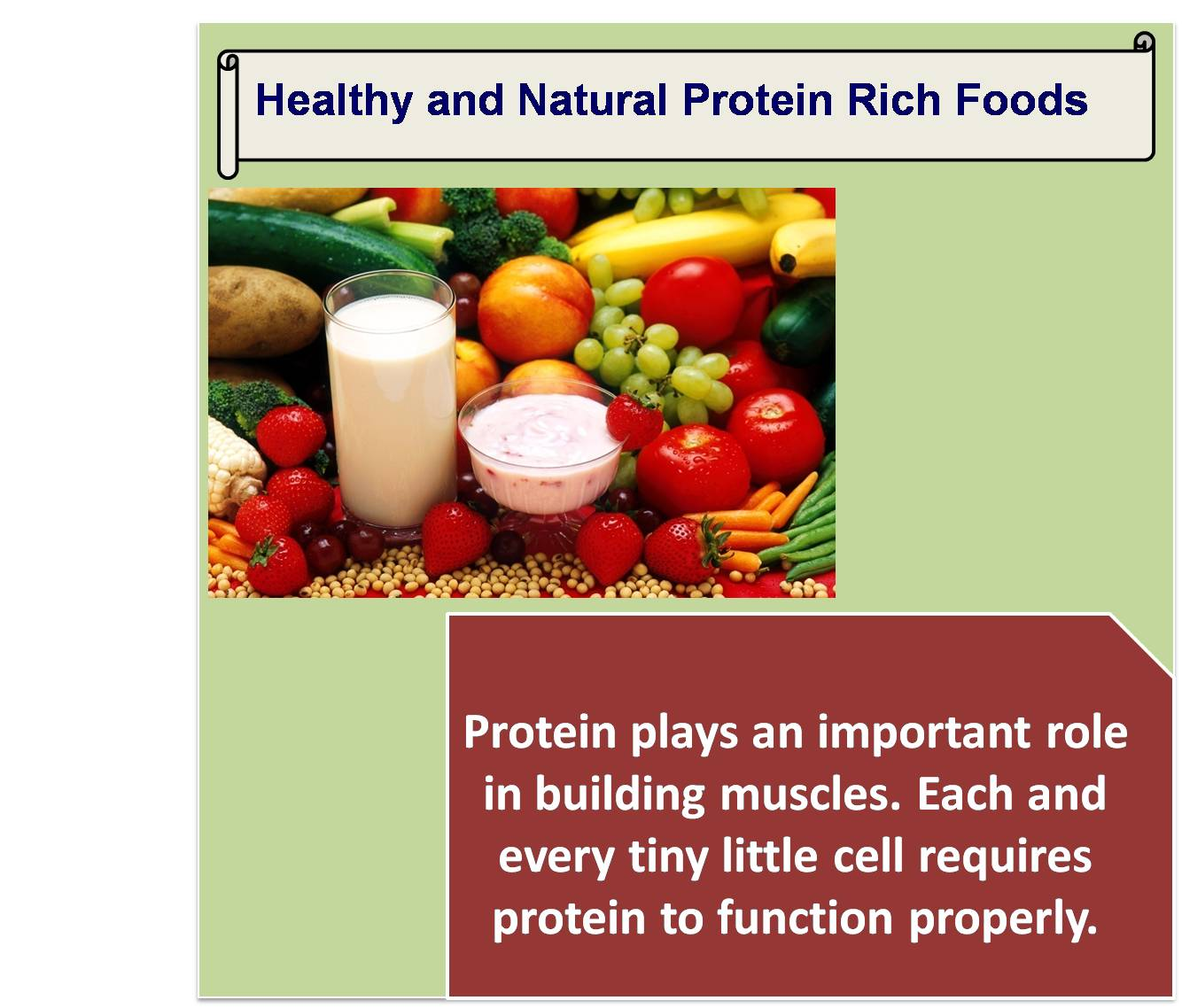 Healthy and natural protein rich foods