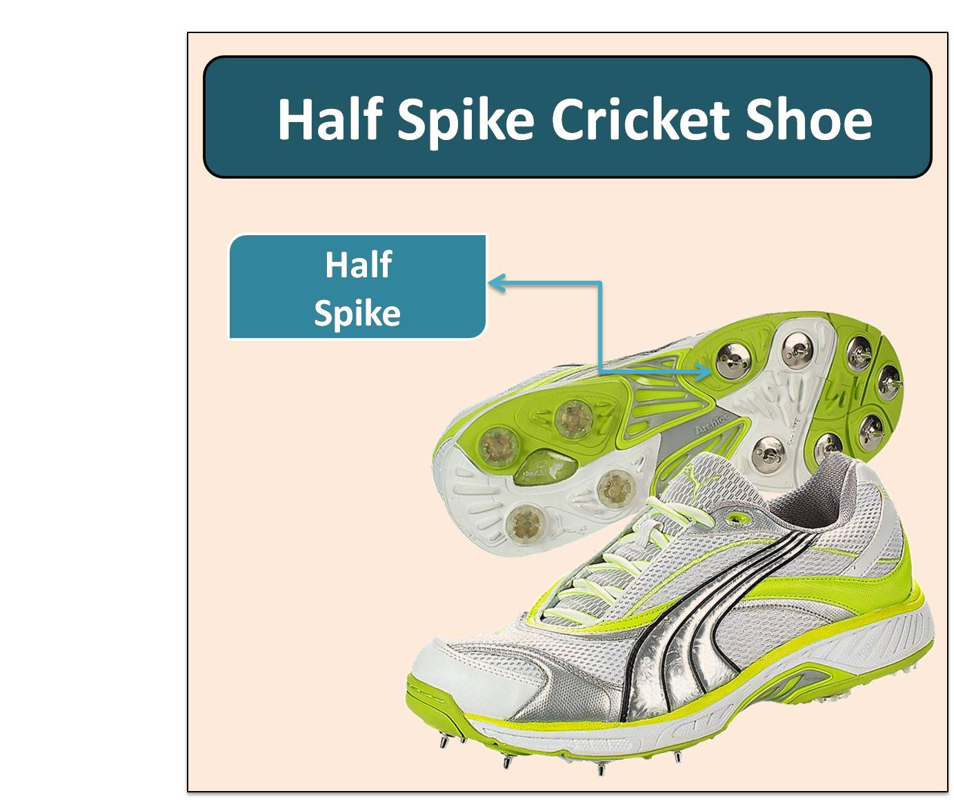 Half Spike Cricket Shoe