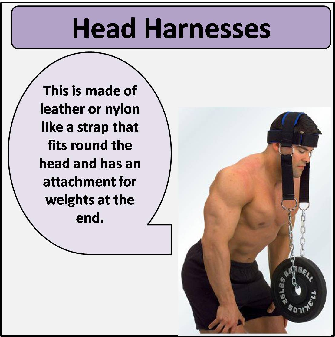 Head Harnesses