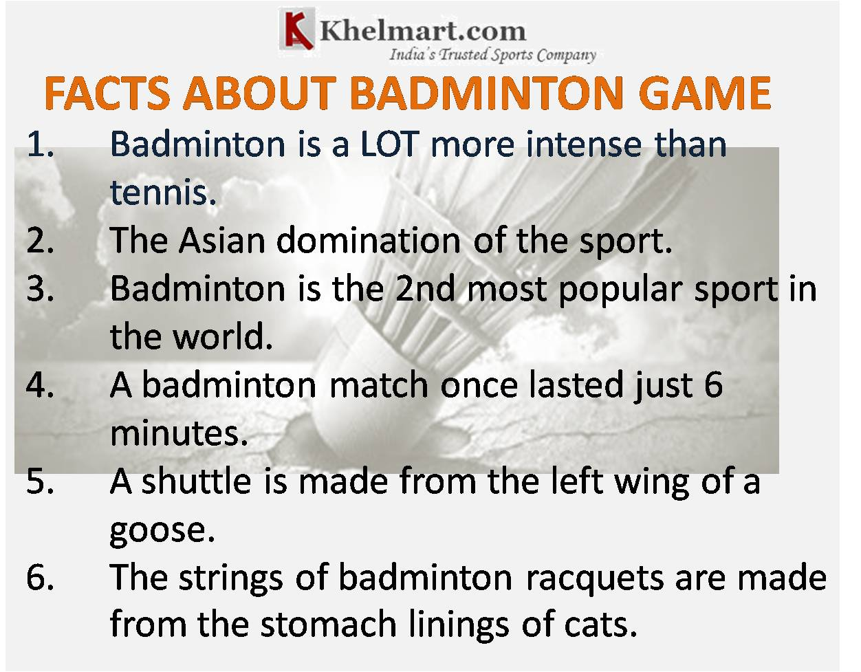 Facts-About-Badminton-Shoes-2017