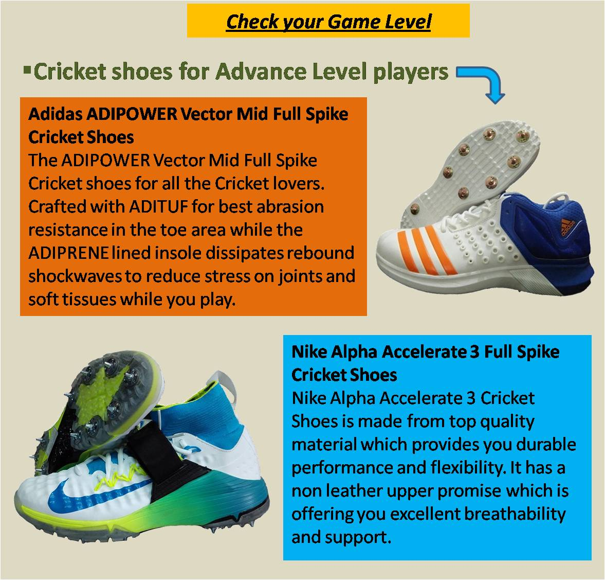 Cricket shoes for Advance Level players 3